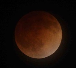 Total Lunar Eclipse Image: NASA Ames Research Center/Brian Day