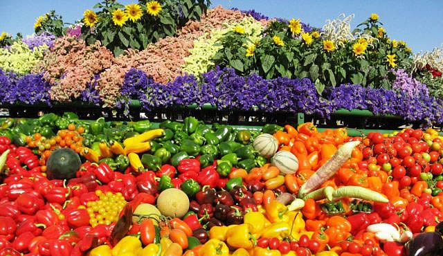 Agriculture in Israel - Agricultural Technology   Facts